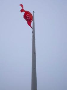 Flag 225