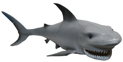 Squirt shark